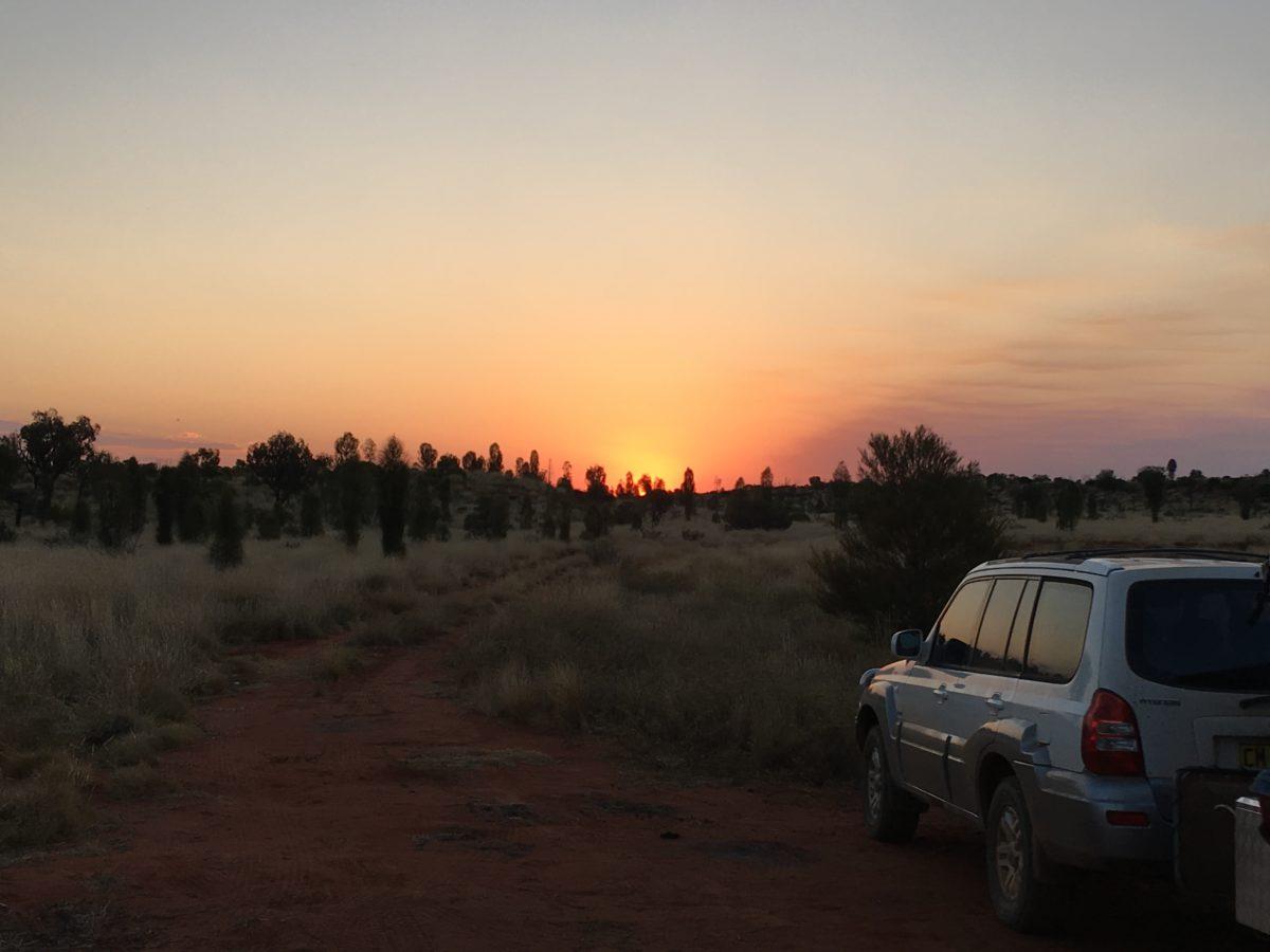 Sunset at free camp at Uluru